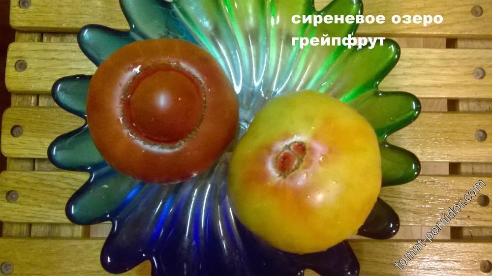 сиреневое озеро и грейпфрут