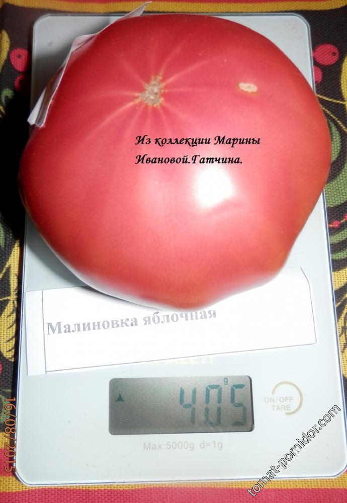 Малиновка яблочная