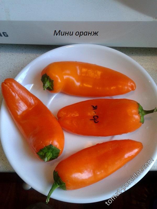 Мини-оранж