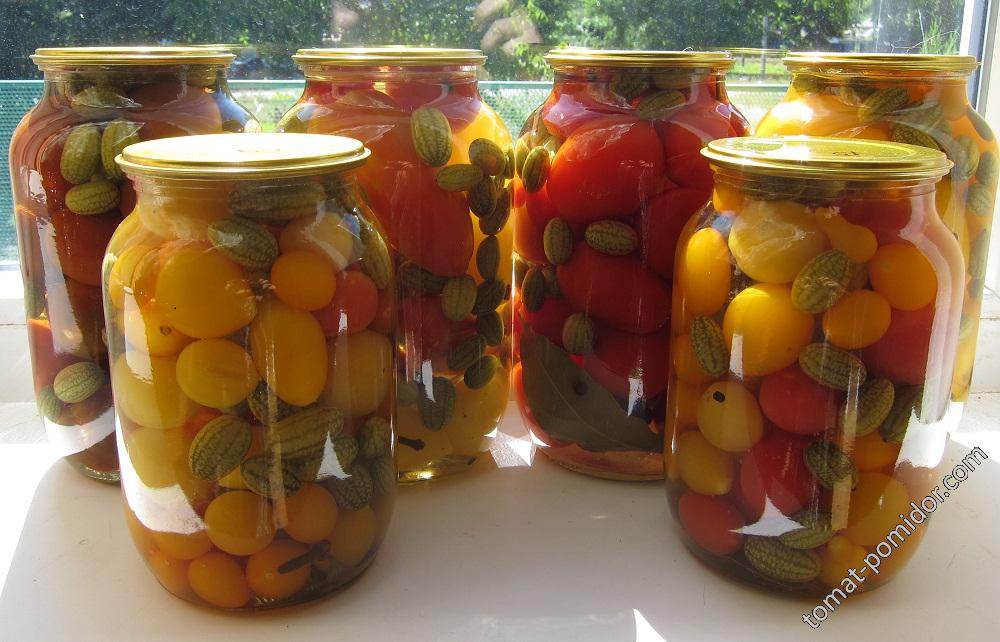 мелотрия с помидорками