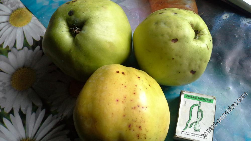 яблоки с  яблоньки Чудное