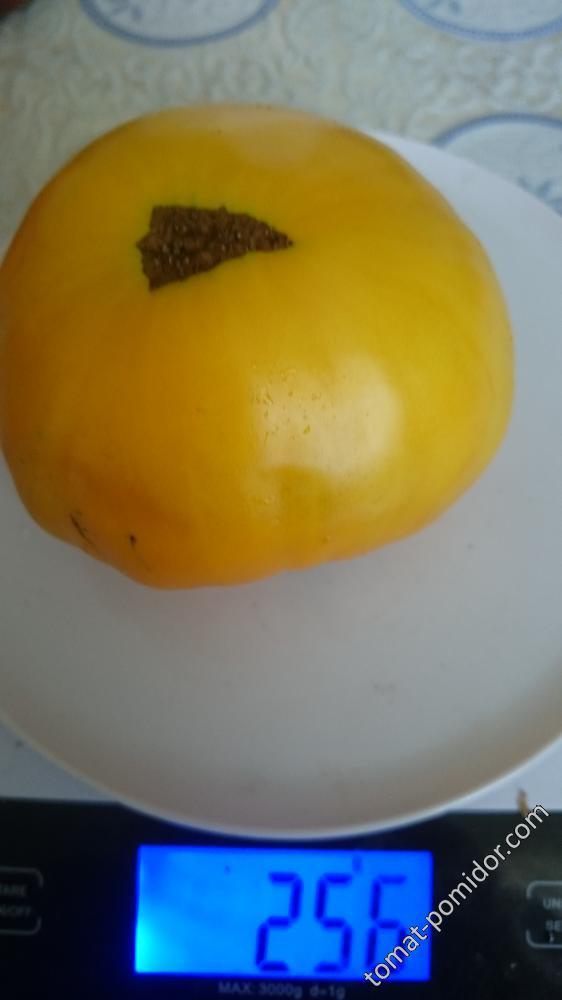 Медово-Сахарный