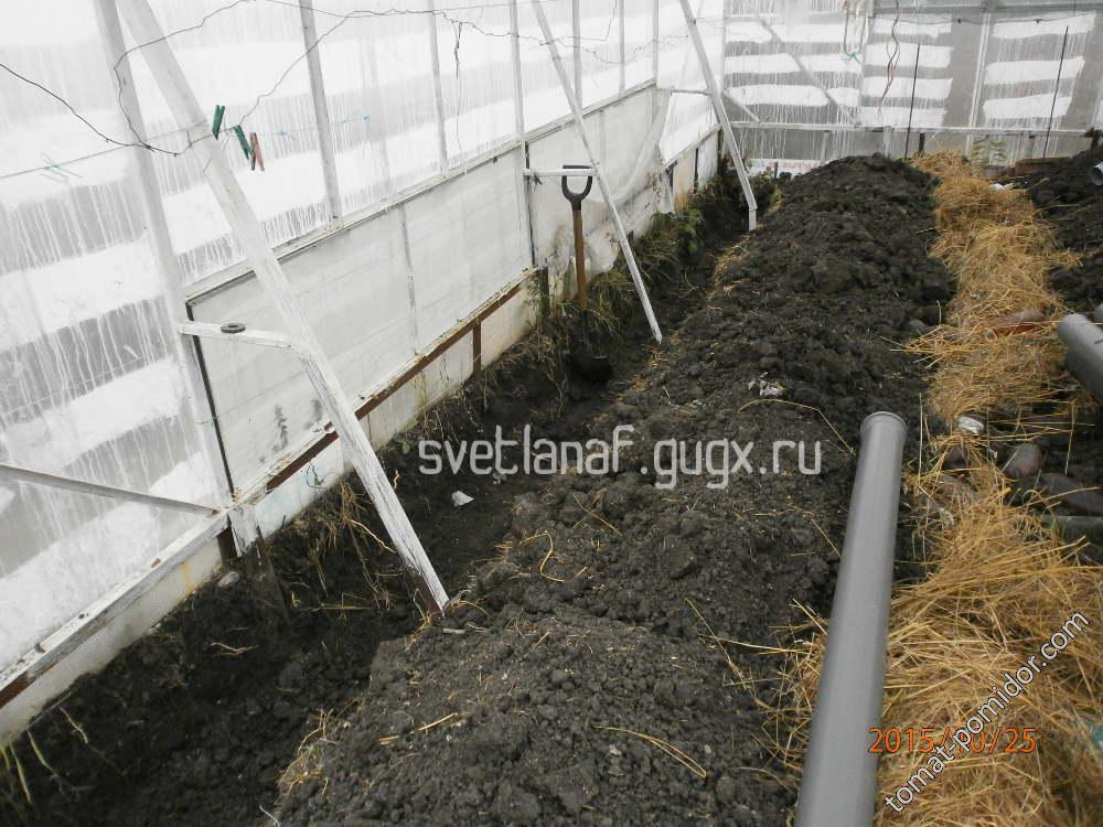 Строим вегетарий